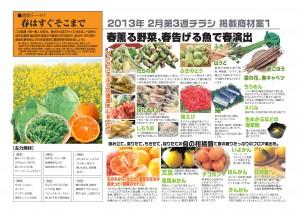 2013年2月 NT企画販促計画書_07