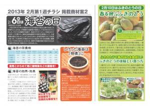 2013年2月 NT企画販促計画書_04