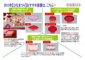 2013年2月 NT企画販促計画書_13