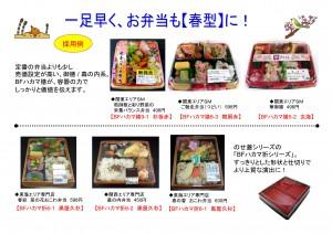 2013年2月 NT企画販促計画書_09