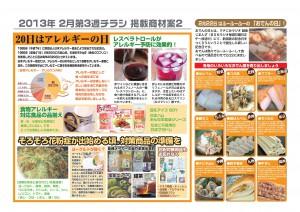 2013年2月 NT企画販促計画書_10