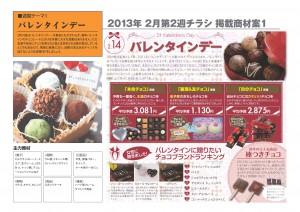 2013年2月 NT企画販促計画書_05