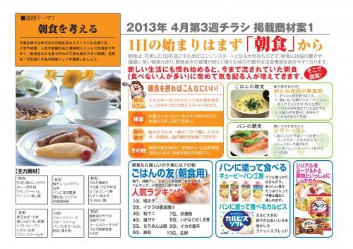 2013年4月 NT企画販促計画書_09