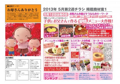 2013年5月 NT企画販促計画書_06