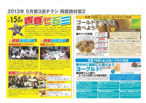 2013年5月 NT企画販促計画書_10