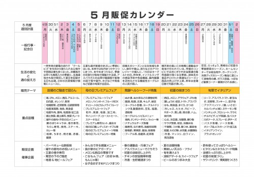 2013年5月 NT企画販促計画書_02