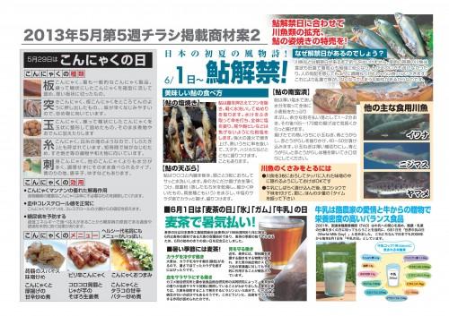 2013年5月 NT企画販促計画書_16