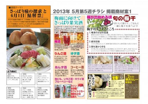2013年5月 NT企画販促計画書_15